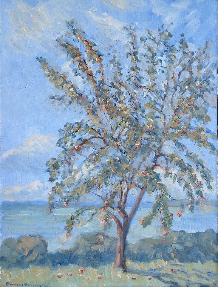 Apple Tree on the Vartry