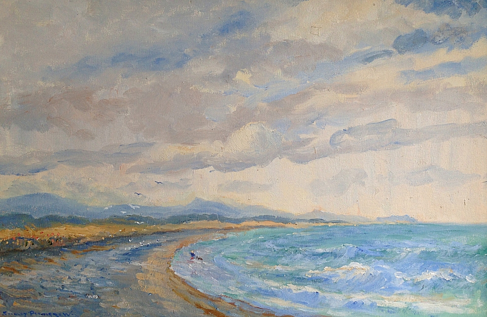 A Brisk Day on the Murrough Shore